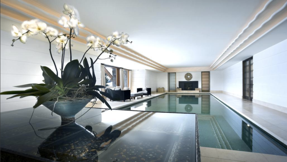 Super Sleek Contemporary Indoor Pool