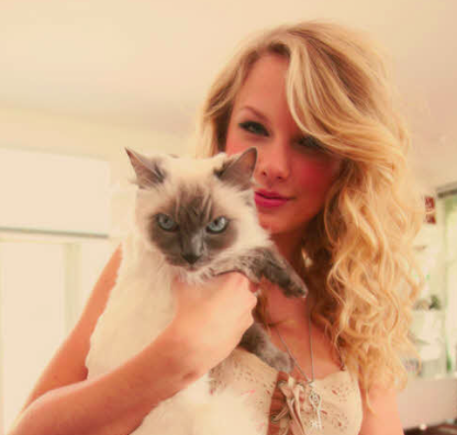 Taylor Swift takes a Selfie with her loving cat.