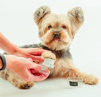 paw moisturizer pet dog gift valentine